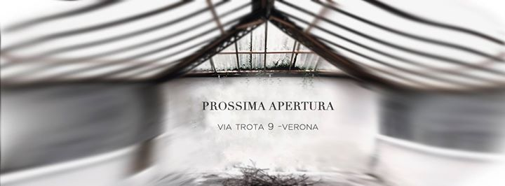 SERRA 9cento updated their cover photo.